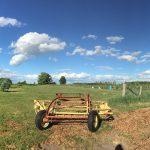 カナダ体験記part2:ファームステイで費用を抑え田舎を楽しむはずが…【2016.5~6月】